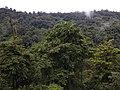 Alauva - Munnar Road Trip IMG 20170624 102248 (33).jpg