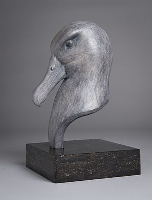 Anthony Smith (sculptor) - Bronze Albatross bust by Anthony Smith