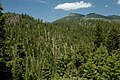 Aldrich Mountain Range from Fields Peak-Malheur (23905670076).jpg