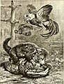 All about animals. Facts, stories and anecdotes (1900) (14591448628).jpg