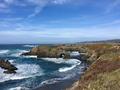 Along the coastline of Marin & Mendocino County, California.png