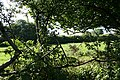 Altarnun, near Hurden - geograph.org.uk - 511720.jpg