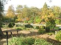 An autumnal Wisley panorama - geograph.org.uk - 1562008.jpg