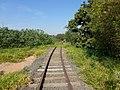 Antigo traçado da ferrovia (Ytuana) em Salto, atualmente projeto turístico Trem Republicano (em construção) - panoramio (16).jpg