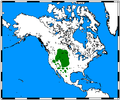 Antilocapra americana map.png