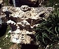 Apamea - DecArch - 2-120.jpg