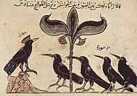 A page from the Arabic version of Kalila wa dimna dated 1210 CE illustrating the King of the Crows conferring with his political advisors