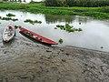 At Bicol River.jpg