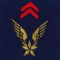 Attribut fourreaux-aviation légère Armée de terre.png