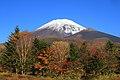 Autumn Fuji.jpg