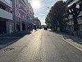 Avenue Émile Cossonneau - Noisy-le-Grand (FR93) - 2021-04-24 - 1.jpg