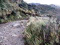 Azufral volcán Camino 1c.JPG