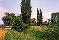 Bývalá hráz rybníka u Kobylnic.jpg