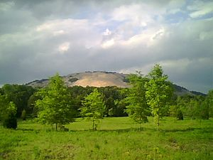 Venues of the 1996 Summer Olympics - Back of Stone Mountain from the Songbird Habitat and Trail in 2009. For the 1996 Summer Olympics, the venue hosted the archery and track cycling events.