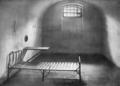 Bakunins cell.png