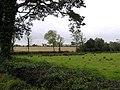 Ballynasculty Townland - geograph.org.uk - 1536480.jpg