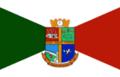 Bandeira Palhoça.png