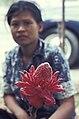 Bangkok-1965-022 hg.jpg