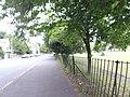 Bangor, UK - panoramio (368).jpg