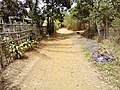 Barangay Malibo Matanda - panoramio (28).jpg