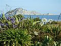 Bare Island1 800x600.jpg