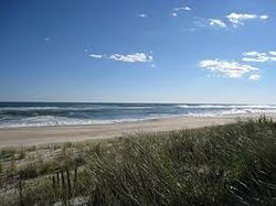 Beach At East Quogue.jpg