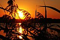 Beautiful Sunset - panoramio (2).jpg