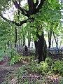Belarus-Minsk-Calvary Cemetery-4.jpg