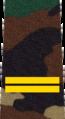 Belarus MIA—16 Junior Sergeant rank insignia (Camouflage).png