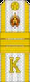 Belarus MIA—23 Cadet-Sergeant rank insignia (White).png