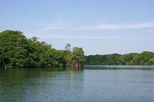Water resources management in Belize - Belize river