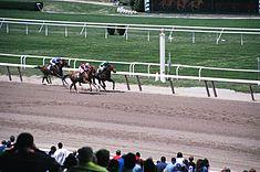 Belmont8 1999-05.jpg