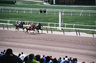 Belmont Stakes - Image: Belmont 8 1999 05