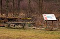 Bench and information board in Bernwood Forest - geograph.org.uk - 1743624.jpg