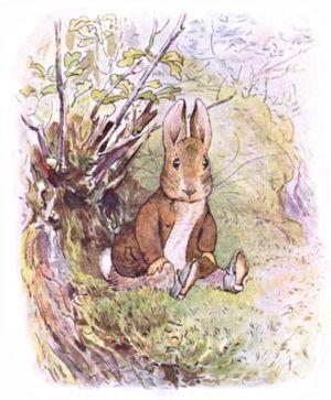 Benjamin Bunny.jpg