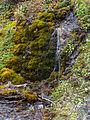 Bergtocht van Vens naar Bettex in Valle d'Aosta (Italië). Watervalletje naast het bergpad 03.jpg