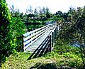 Bermuda (UK) image number 120 walkway at Coopers Island Nature Preserve.jpg