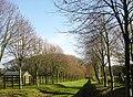 Beside Barlett's Farm - geograph.org.uk - 289269.jpg
