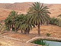 Betancuria, 35637, Las Palmas, Spain - panoramio (151).jpg