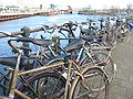 Bikes outside Central station.jpg