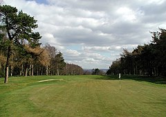 This is a green vista comprising a sunlit golf course link and hole with an upright flagpole all set within a Scots Pine plantation on either side. A sand bunker is off to the left. The sky is bright but largely clouded and there is a solitary golf ball just on the green in the foreground.
