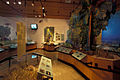 Biscayne National Park H-dante fascell visitor center interior.jpg