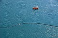Blejsko jezero swimmer and rowing boat 01092008 71.jpg