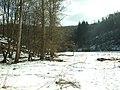 Bojanovice, Rewaston, údolí Kocáby.JPG