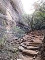 Boynton Canyon Trail, Sedona, Arizona - panoramio (39).jpg