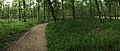 Brazos Bend State Park, Pilant Slough Trail.jpg