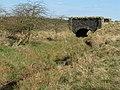 Bridge over Middle Burn - geograph.org.uk - 1231646.jpg