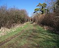 Bridleway beside the Ackling Dyke - geograph.org.uk - 688085.jpg