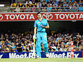 Brisbane Heat vs Melbourne Stars T20 15.jpg