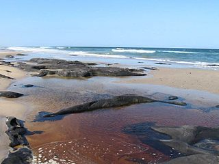 Broadwater National Park Protected area in New South Wales, Australia